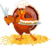 Turkey And Pie Stock Photo