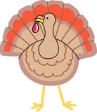 TURKEY APPLIQUE Stock Photography