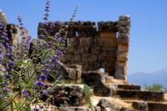 Turkey, Architecture Royalty Free Stock Image