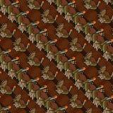 Turkey background Stock Image