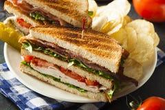 Turkey and Bacon Club Sandwich Royalty Free Stock Photo