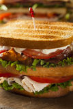 Turkey and Bacon Club Sandwich Royalty Free Stock Photography