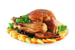 Turkey baked in the oven Royalty Free Stock Images