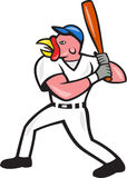 Turkey Baseball Hitter Batting Isolated Cartoon Stock Photography