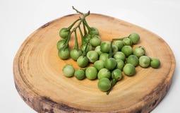 Turkey berry Solanum torvum on chopping wooden background. Turkey berry Solanum torvum on chopping wooden Royalty Free Stock Photos