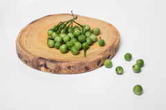 Turkey berry Solanum torvum on chopping wooden background. Turkey berry Solanum torvum on chopping wooden Stock Images