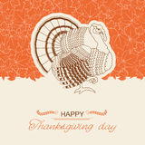 Turkey bird background for Thanksgiving day card. Turkey bird for Thanksgiving day card.Vector decor holiday background with text Royalty Free Stock Photography
