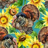 Watercolor turkey with sunflowers seamless pattern Stock Photo