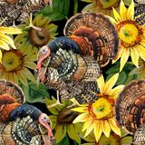 Watercolor turkey with sunflowers seamless pattern. Turkey bird with sunflowers illustration. Watercolor turkey seamless pattern on the black background Stock Photos