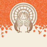Turkey bird for Thanksgiving day card for text Stock Photography