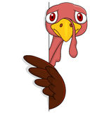Turkey with blank sign vector illustration
