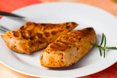 Turkey breast in the plate Stock Images