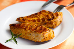Turkey breast in the plate Royalty Free Stock Image