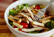 Turkey breast salad with many ingredients Stock Photography
