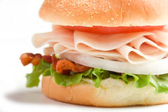 Turkey on Bun royalty free stock images