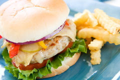 Turkey Burger Royalty Free Stock Photos