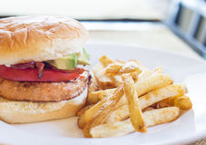Turkey Burger with Fries Royalty Free Stock Image