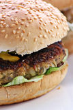 Turkey burger. Image of a testy turkey burger in a bun Royalty Free Stock Photography