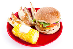 Turkey Burger Isolated with Path Royalty Free Stock Photography