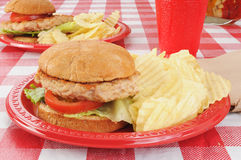 Turkey burgers on a picnic table. Healthy turkey or chicken burgers on a picnic table Stock Image
