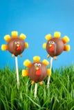 Turkey cake pops Royalty Free Stock Images