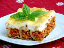 Turkey cannelloni Royalty Free Stock Photos