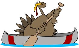 Turkey In A Canoe Stock Photos