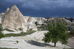 Turkey, Cappadocia. Fields and gardens Cappadocia in Turkey Royalty Free Stock Photo