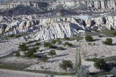 Turkey, Cappadocia. Fields and gardens Cappadocia. Turkey Royalty Free Stock Photography