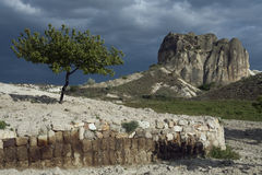 Turkey, Cappadocia. Fields and gardens Cappadocia in Turkey Royalty Free Stock Images