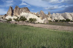 Turkey. Cappadocia. Unusual landscape of Cappadocia. Turkey Royalty Free Stock Images