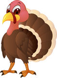 Turkey cartoon Royalty Free Stock Images