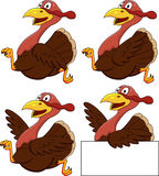 Turkey cartoon Royalty Free Stock Photos
