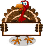 Turkey cartoon with blank board Stock Photo
