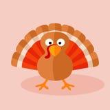 Turkey. Cartoon of turkey. No gradients Royalty Free Stock Images