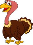 Turkey cartoon posing Royalty Free Stock Image