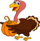 Turkey cartoon with pumpkin Royalty Free Stock Images