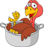 Turkey cartoon in the saucepan Stock Photography