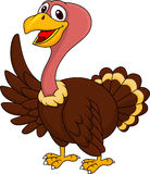 Turkey cartoon waving Stock Photography