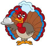 Turkey chef Royalty Free Stock Photos