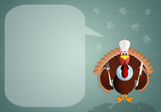 Turkey chef background Stock Images