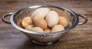 Turkey and chicken eggs in colander. On wooden background Royalty Free Stock Photos