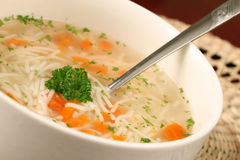 Turkey or chicken soup Royalty Free Stock Image