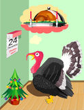 Turkey before Christmas Stock Image