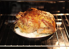 Turkey for Christmas dinner royalty free stock photography