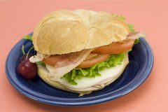 Turkey club croissant Royalty Free Stock Photo