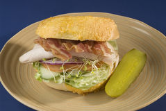 Turkey club sandwich Stock Image