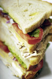 Turkey club sandwich Royalty Free Stock Photos