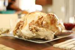 Turkey Dinner Royalty Free Stock Photo