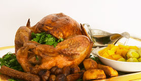 Turkey dinner Royalty Free Stock Image